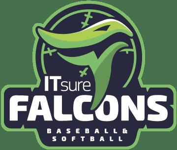 ITsure-Falcons_Logo_MAIN_color_360px